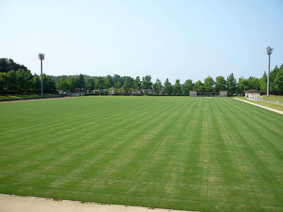 球技場の写真